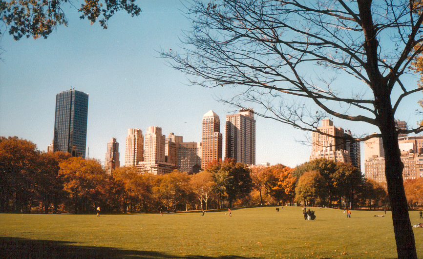 Một ví dụ về kiến trúc cảnh quan- Central Park ở New York