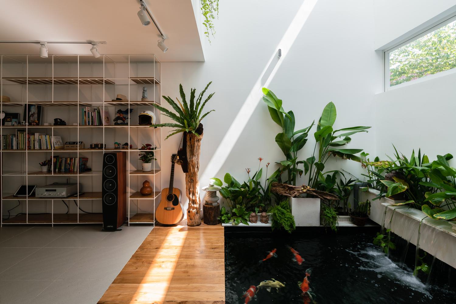 Nuôi cá và trồng thêm cây cỏ cho không gian sống tốt hơn