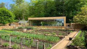 Thả mình vào thiên nhiên với thiết kế cảnh quansân vườn đẹp