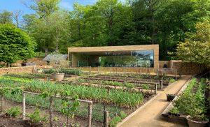 Thiết kế cảnh quansân vườn