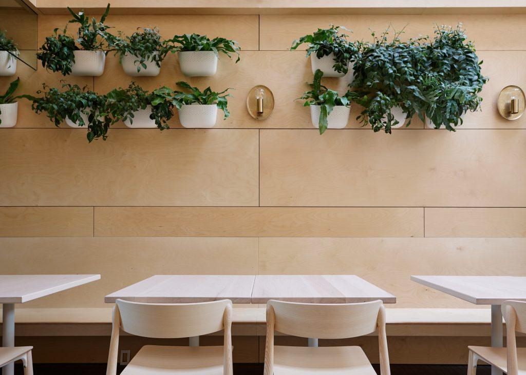 Thiết kế quán cafemặt tiền 5m