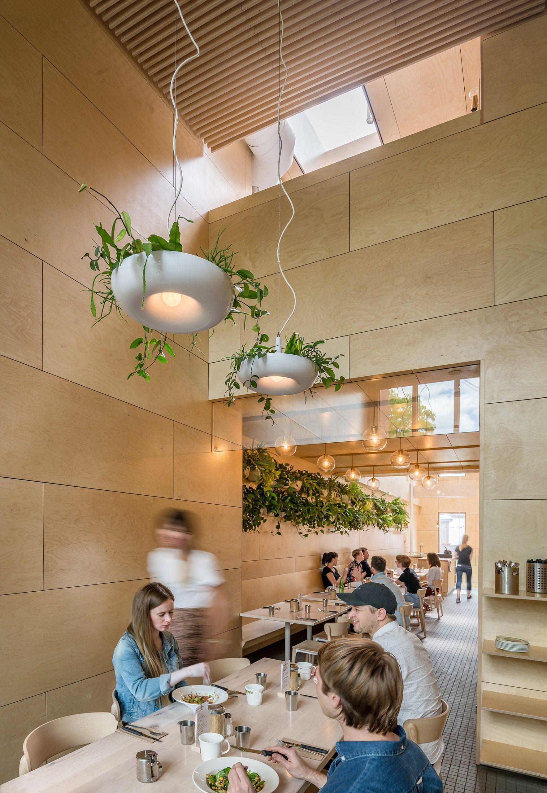 Thiết kế quán cafemặt tiền 5m 1