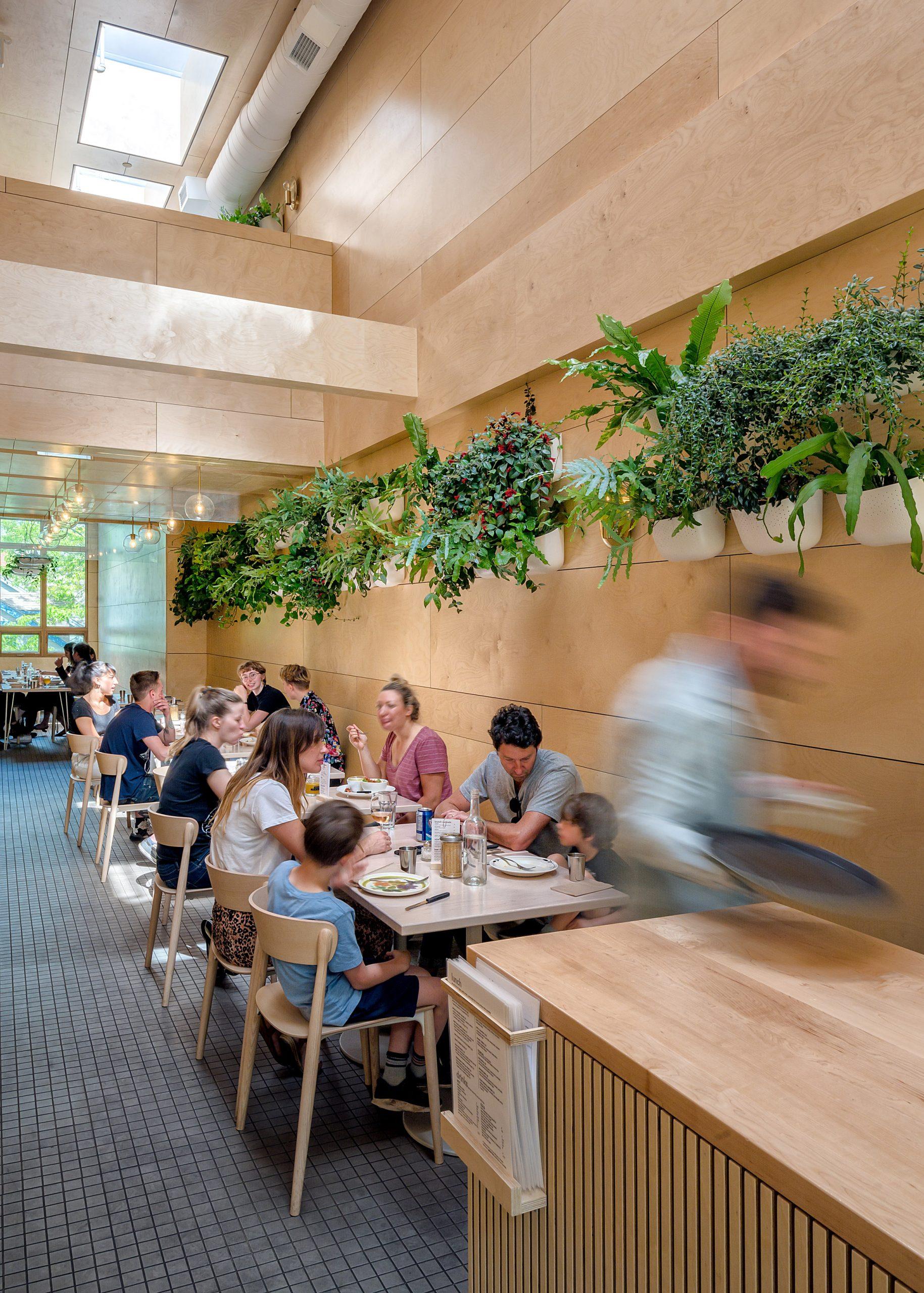 Thiết kế quán cafemặt tiền 5m 10