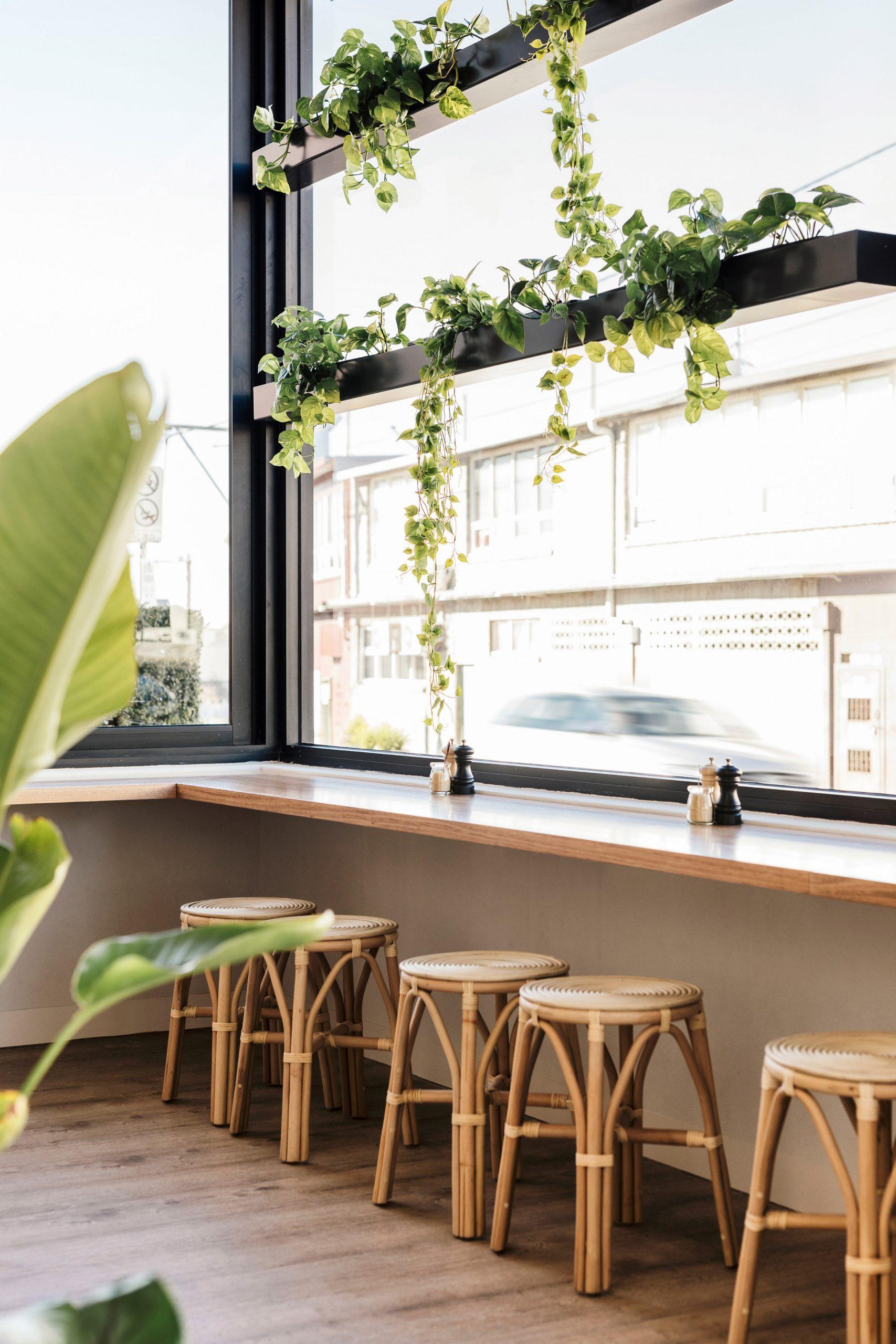 Thiết kế quán cafenhỏ đẹp 6
