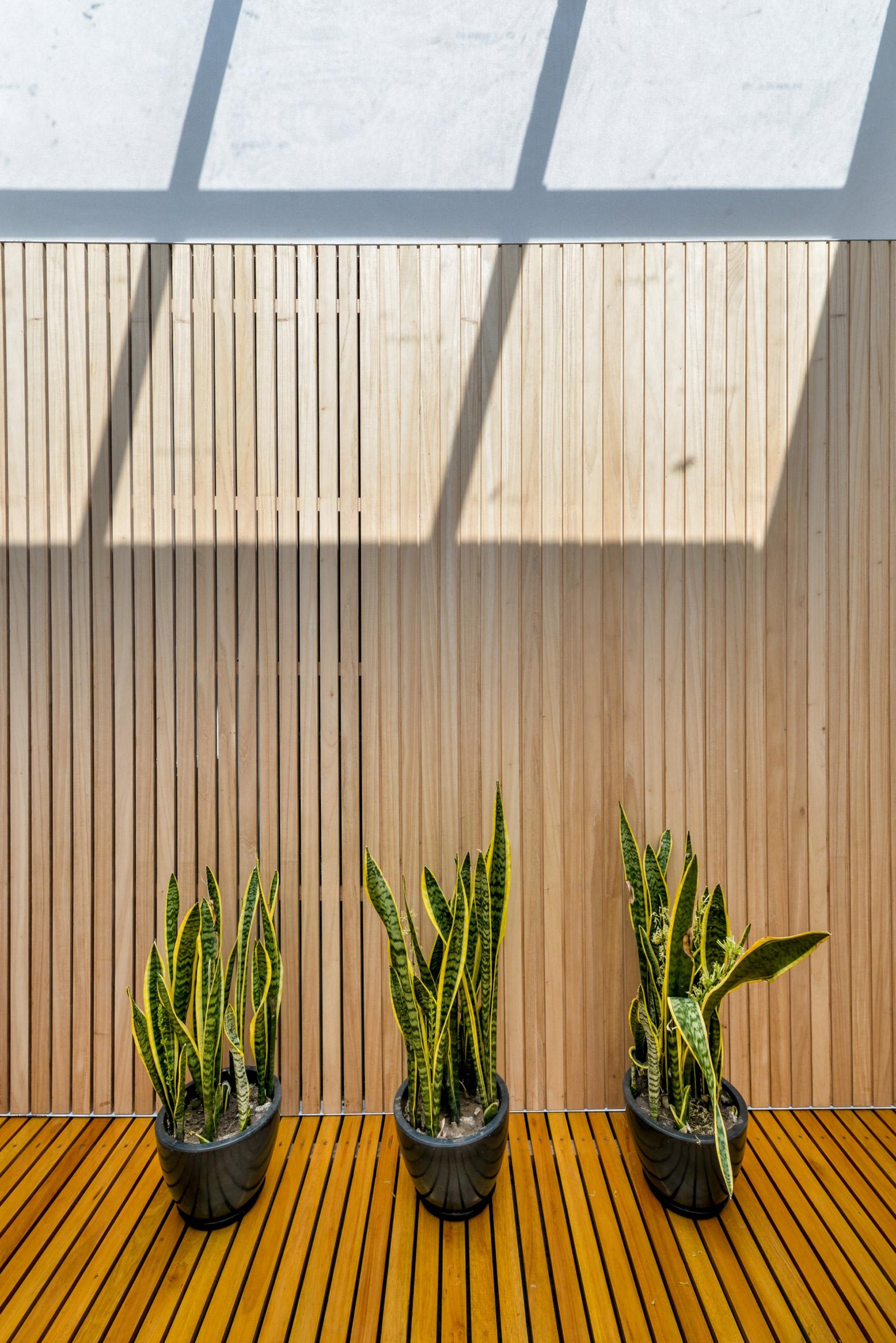 Mẫu nhà gỗ hiện đại 11