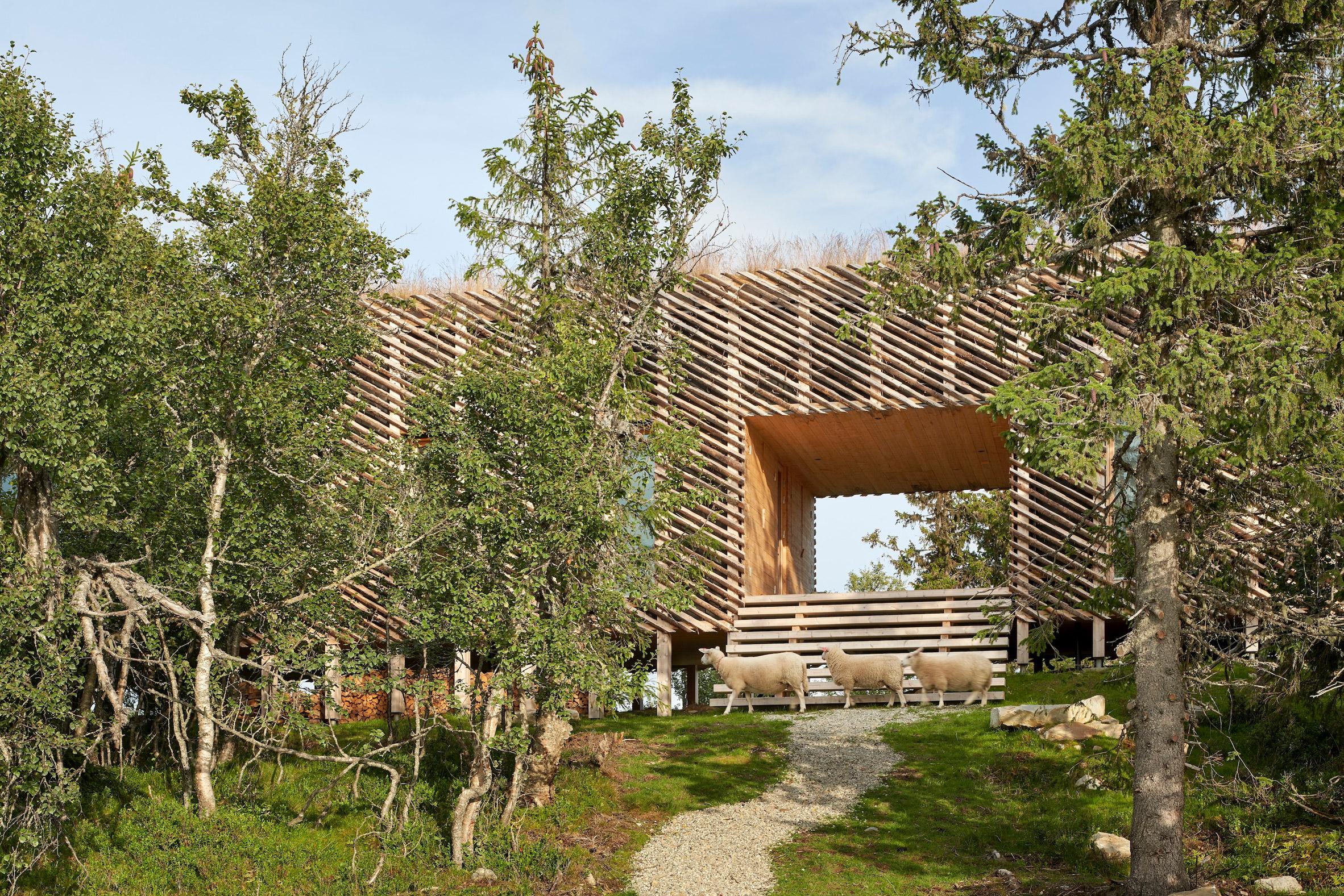 Nhà gỗ 3 gian đơn giản 4