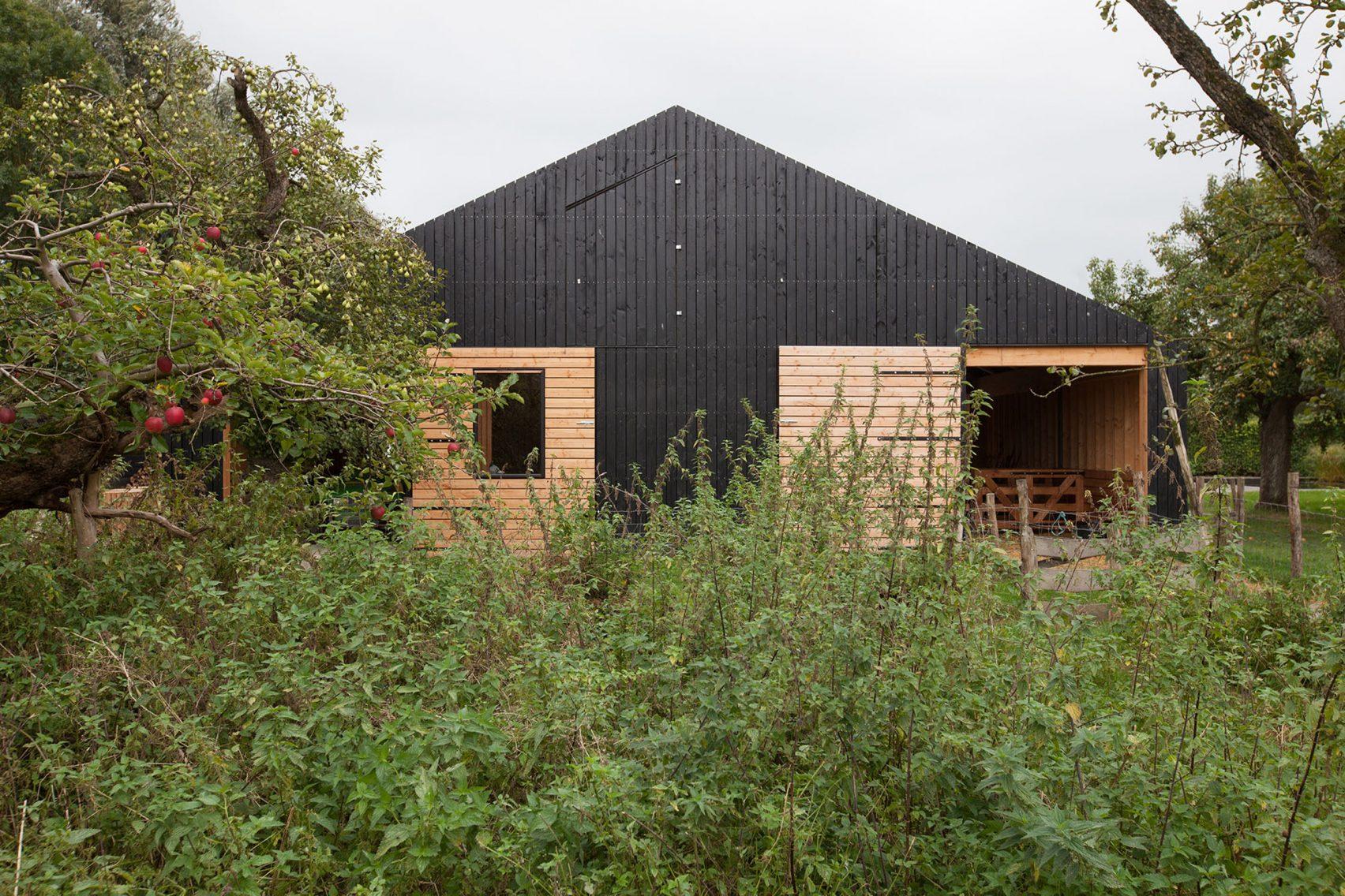 Nhà gỗ cấp 4 hiện đại 6