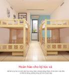 Giường Tầng Gỗ Thông 1